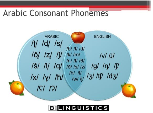 arabicphonemes