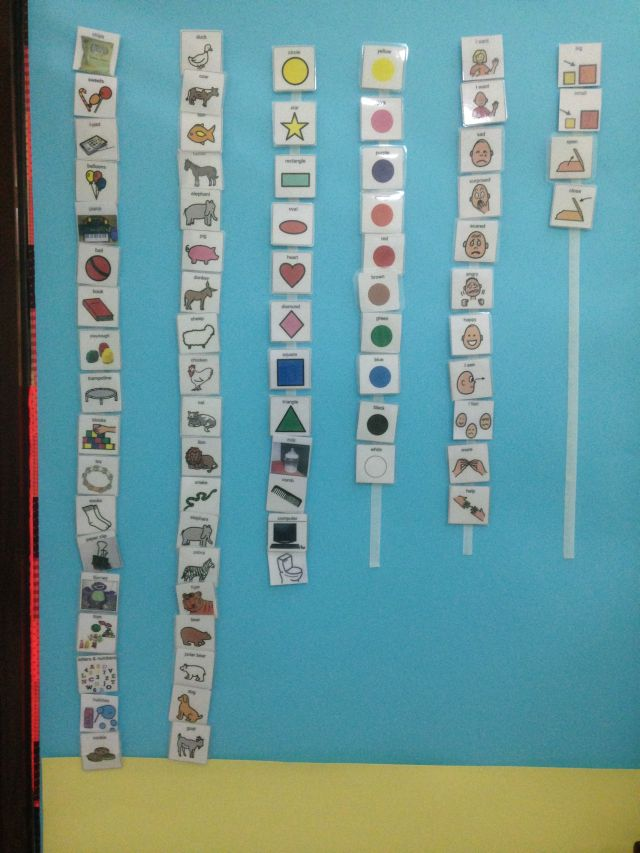 PECS board
